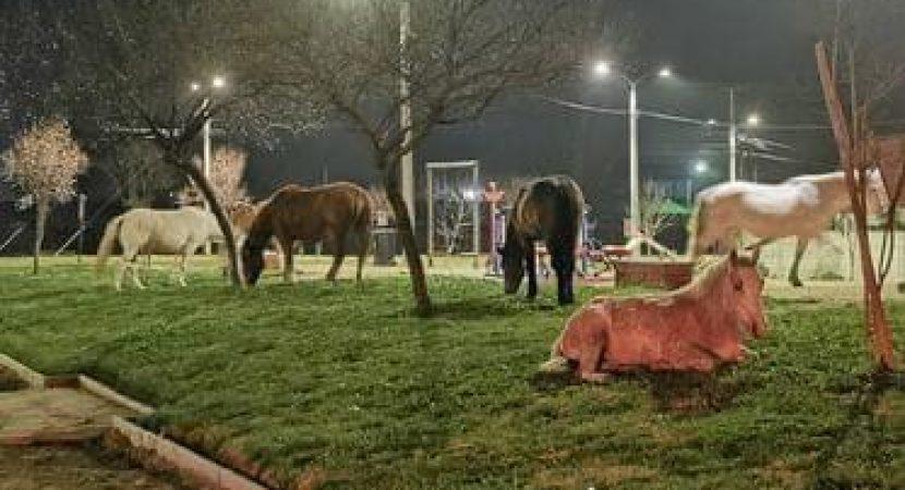 Caballos se toman plaza de San Javier durante el toque de queda