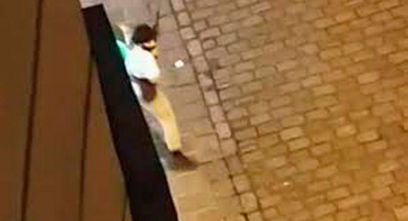 Ataque terrorista en Viena deja tres fallecidos y varios heridos entre ellos un policía que se encuentra grave